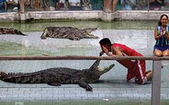Крокодиловая и Змеиная фермы